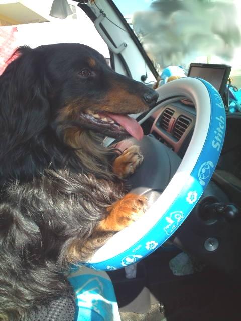 運転するよ
