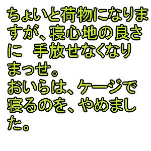 Cocolog_oekaki_2010_04_04_00_45